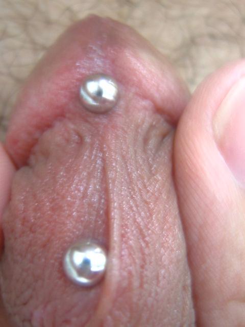 Prinz albert piercing gedehnt